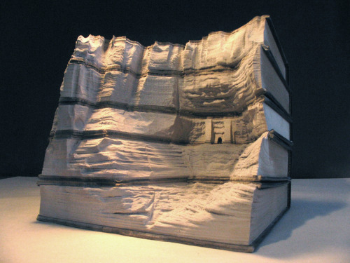 robotkritten:  This is INSANE. brain-food:  Guy Laramee stunning book sculptures.    Wow, it must be nice to have enough money/books to be able to chop up into sculptures. :I