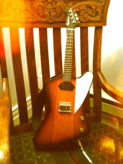 MUCH EXCITEMENT My new solid-body uke. (Actually a modified/upgraded Epiphone Mandobird) Bit saucy. New Pickup from Almuse. #PutABirdOnIt