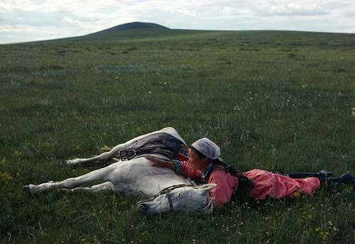Horse training for the militia, Mongolia, 1979 by Eve Arnold (1912-2012)