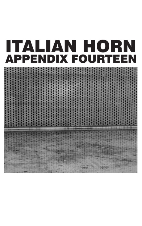 "First 50 Italian Horn orders will receive a 3 song cassette titled Appendix Fourteen. Order both the 12"" and the Prurient 2x7"" and save too. ORDER HERE"