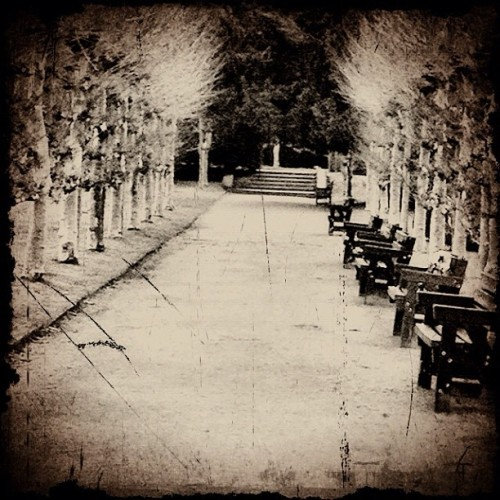 Take a Seat….. (Taken with instagram)