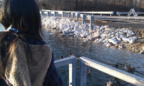 Kelly's just having a field day with these ducks. Haha it's so cute.