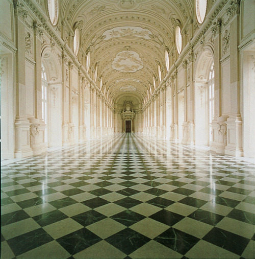 splinter-eye:  muteoilydiscolour:The Reggia di Venaria Reale, in Italy.