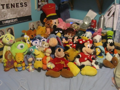 My Disney Stuffed Animal Collection Yes I am a 16 year old girl and I still get these. I know I have a problem