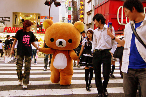 http://japanworshipersunited.tumblr.com  RILAKKUMA!!!!