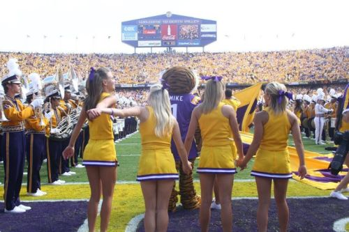 cheerpeople:  LSU for the BCS!  TIGERS TIGERS TIGERSSS