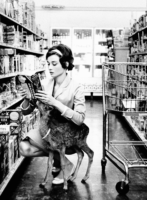 Audrey Hepburn grocery shopping with her deer photographed by Bob Willoughby 1958