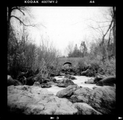 Holga 120 Film Camera - TMax 400 Film