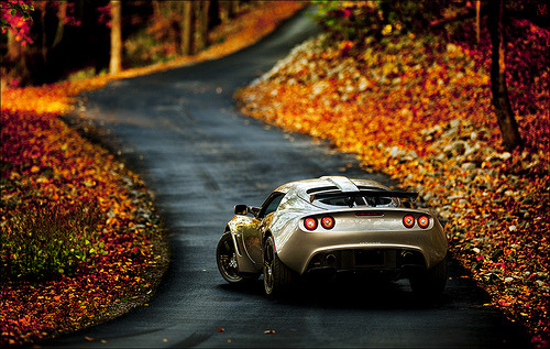 carpr0n:  The Devil's path Starring: Lotus Exige (by VisualEchos)