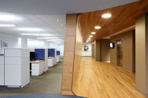 Offices for Atlantic Container Line design by TSC Design….. Love the hallway!