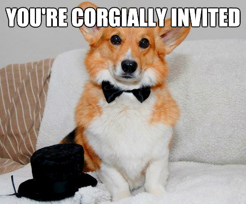 vh1:  Put a corgi on an invite…flash forward to me there WITH BELLS ON. 10 Perfect Corgi Invitations For Any Party [BestWeekEver]