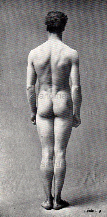 1911 Human Anatomy Photographic Study