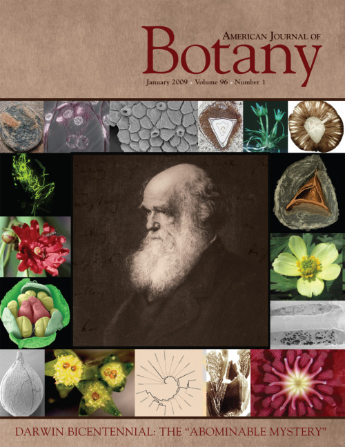 Darwin special issue. (via Botanical Society of America) I really like this cover.