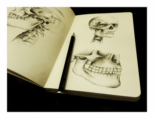 noha-art:  Archive-Traditional art Anatomy-Pencil on moleskine sketchbook