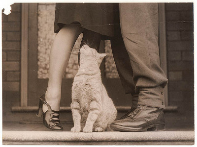 Soldier's goodbye & Bobbie the cat, ca. 1939-ca. 1945 / by Sam Hood by State Library of New South Wales collection on Flickr.I love this picture ;)