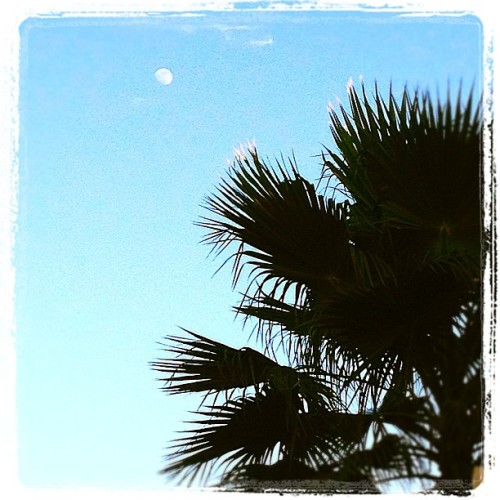 Day moon (Taken with Instagram at Lakepointe Lookout)