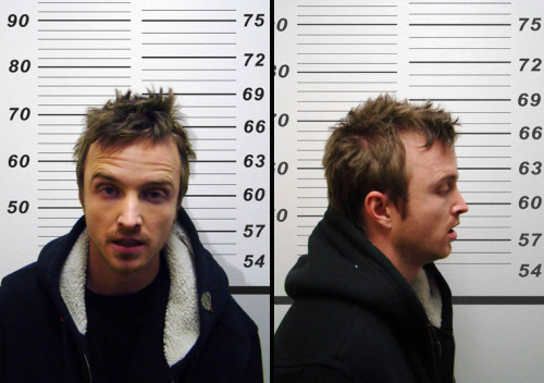 Jesse Pinkman is at worst a meth head and a murderer and at best SO CUTE and oh my god his VOICE and don't you just love the way he dresses even though it's like SO dumb and did you see how we was with Brock he would be SUCH a good DAD!!!!!!!!
