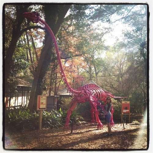 Naomi the paleontologist. (Taken with instagram)