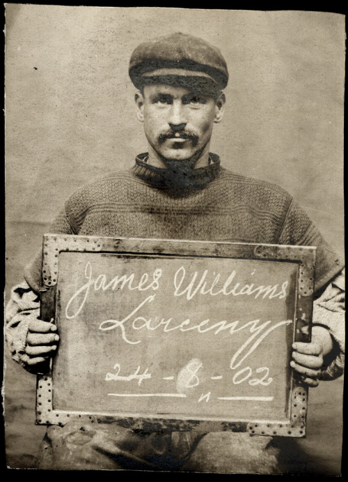 oldsparky:  Name: James WilliamsArrested for: LarcenyArrested at: North Shields Police StationArrested on: 24th August 1902Tyne and Wear Archives ref: DX1388-1-5-James Williams