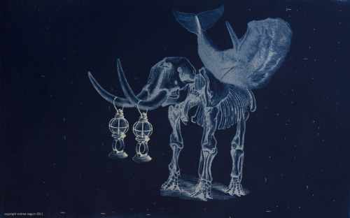 "The Last of the Lampbearers, cyanotype, 19x13"", by Andrew Seguin"