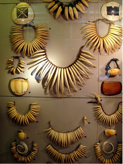 suchasensualdestroyer:  Collection of Fijian whale ivory necklaces, Archeology and Anthropology Museum, Cambridge, England.