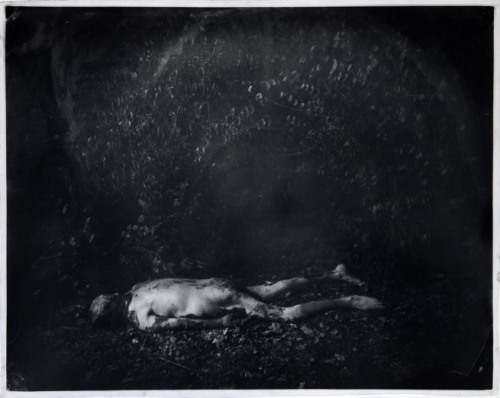 Sally Mann, Untitled WR Pa 59, 2001.