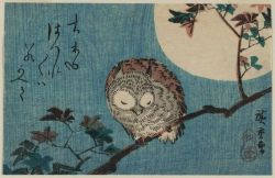 "windypoplarsroom:  Utagawa Hiroshige ""Smalll Horned Owl On A Maple Branch Under A Full Moon"""
