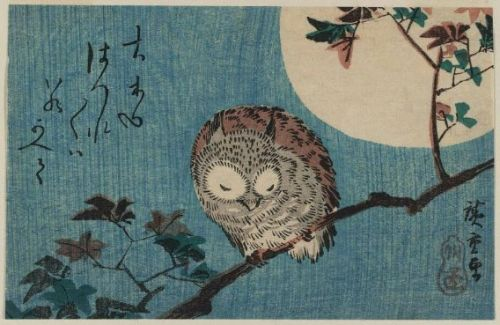 "windypoplarsroom:   Utagawa Hiroshige ""Smalll Horned Owl On A Maple Branch Under A Full Moon""  via the blue lantern"