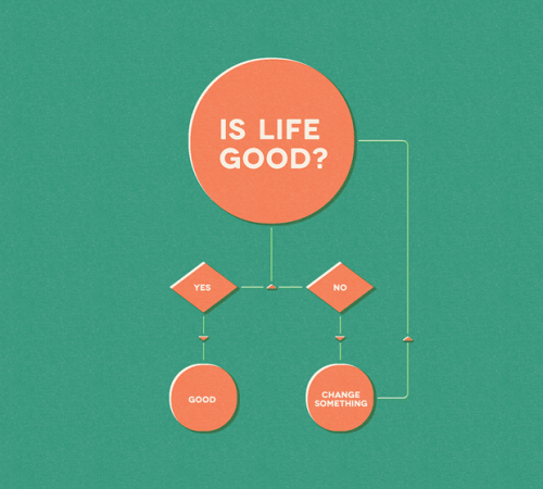 The most simple and yet most important flux diagram: Is Life Good?