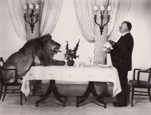 thisisdannel:  mourir:  Hitchcock and the MGM Lion  gansta.