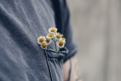 roam-antics:  a pocket full of flowers by ceceyy [here every now & then] on Flickr.