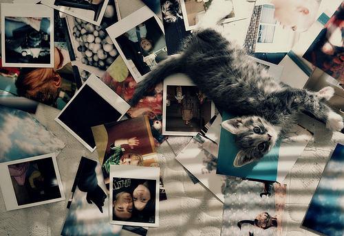youremyfirework:  Não são só fotos, sãomemorias.Fotos são jeitos de ver o passado, sem voltar no tempo.