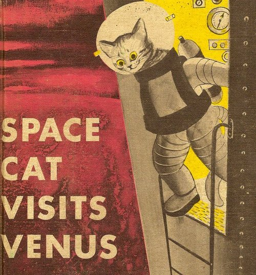flourescenteadolescent:  space cat