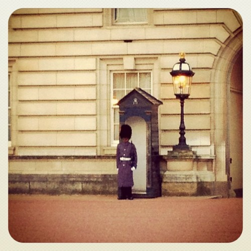 Guard at Buckingham Palace (Taken with instagram)