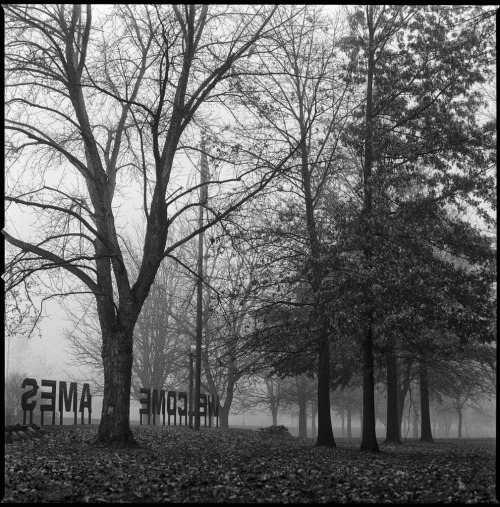 November, 2009. Foggy morning in Ames Hasselblad 503cx, Kodak Tri-X, HC110