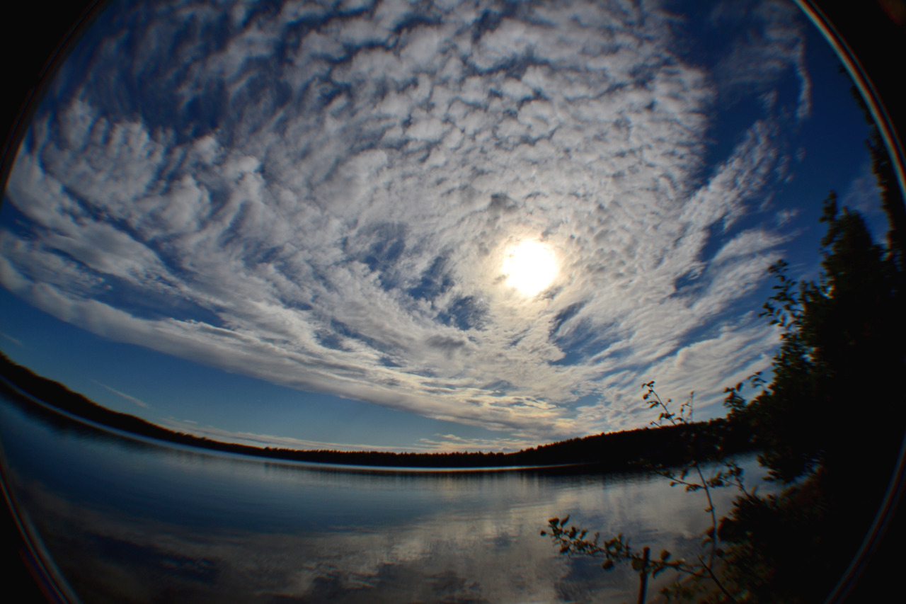 fisheye by: Jackie Hassin