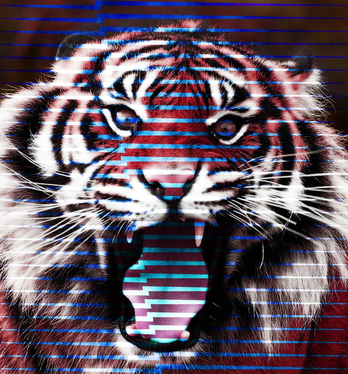 TIGER BOSS REDUX