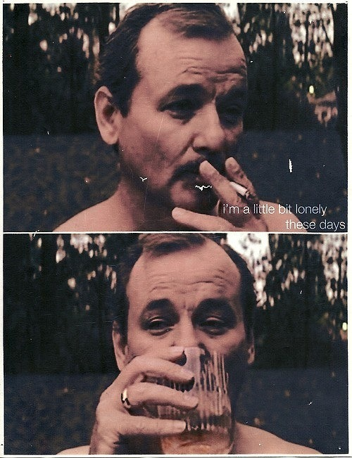 I LOVE YOU BILL MURRAY