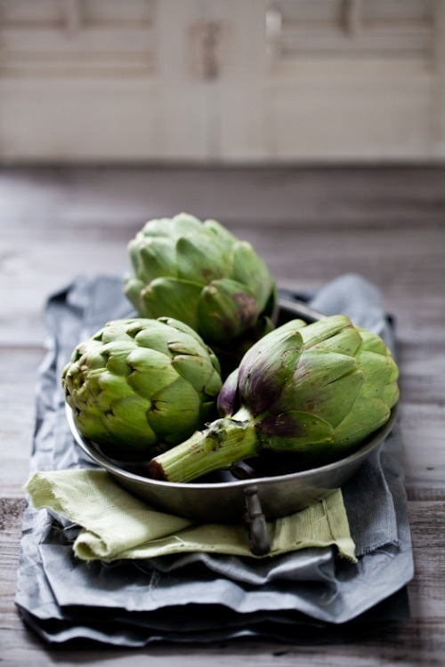 thelittlecorner:  The Little Corner ~Artichokes