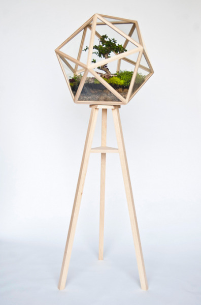 batesnursery:  visualmixtape:  twinfawns: wooden terrarium  It's just too perfect!