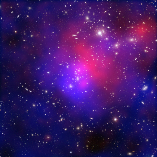 rhamphotheca:  What is Dark Matter? by NASA staff   By fitting a theoretical model of the composition of the Universe to the combined set of cosmological observations, scientists have come up with the composition that we described above, ~70% dark energy, ~25% dark matter, ~5% normal matter. What is dark matter? We are much more certain what dark matter is not than we are what it is. First, it is dark, meaning that it is not in the form of stars and planets that we see. Observations show that there is far too little visible matter in the Universe to make up the 25% required by the observations. Second, it is not in the form of dark clouds of normal matter, matter made up of particles called baryons. We know this because we would be able to detect baryonic clouds by their absorption of radiation passing through them. Third, dark matter is not antimatter, because we do not see the unique gamma rays that are produced when antimatter annihilates with matter. Finally, we can rule out large galaxy-sized black holes on the basis of how many gravitational lenses we see… (read more: NASA Astrophysics)    (image: X-ray: NASA/CXC/ITA/INAF/J.Merten et al, Lensing: NASA/STScI; NAOJ/Subaru; ESO/VLT, Optical: NASA/STScI/R.Dupke)