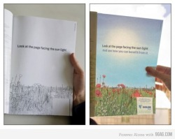 alittlespeckoflight:  Look at the page facing the sunlight And see how you can benefit from it