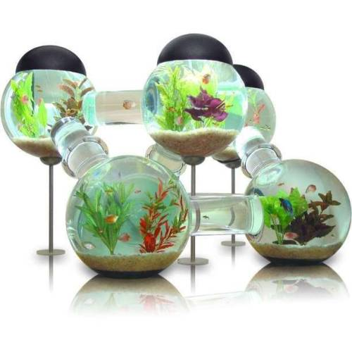 Waterworld Modern Aquarium