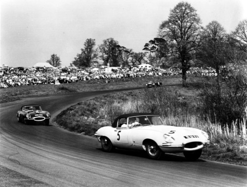 Oulton Park, 1961. Roy Salvadori / Graham Hill with the Jaguar E-Types.