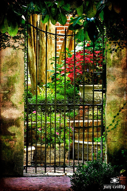 Savannah Courtyard by Jim Crotty on Flickr.Hidden courtyard on the streets of Savannah