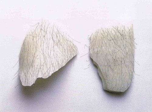 queervisualculture:  Untitled 1992-1993 Wax and human hair Robert Gober