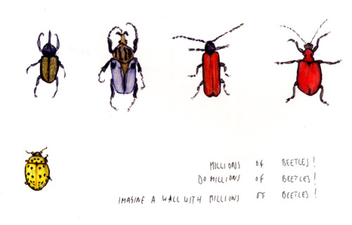 joewardillustration:  Just some little beetles…. could lead to a hhhuuuggggeee piece with hundreds of insects??