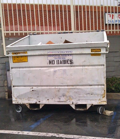 No babies in the dumpster: I wonder where this is located. My top 3 guesses Near a Planned Parenthood Near a High School Gymnasium (see this Family Guy clip) Some [unspecified] country that throws away babies [of a specific gender or ethnicity]. *We do not support the throwing away of babies in dumpsters, in rivers, out windows, off balconies, or any other stereotypical place people have thrown out babies throughout history.