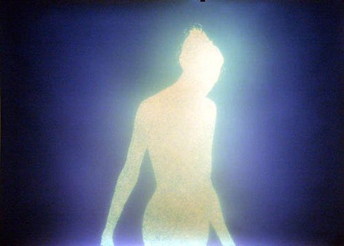 peepingbird:  por Christopher Bucklow