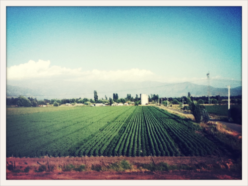 Day 56 | Going back up through the heartland - la valle central | Somewhere between Pucón and Santiago, Chile